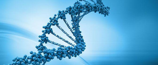 Epigenética: Sí podemos cambiar
