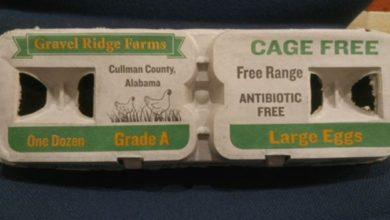Photo of FDA: 38 enfermos por brote de salmonela en huevo que afectan a AL, GA, TN