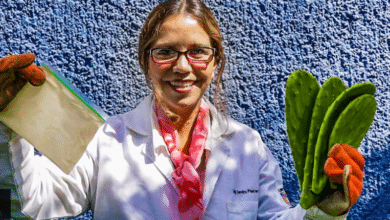 Photo of Investigadora mexicana crea plástico biodegradable con jugo de nopal