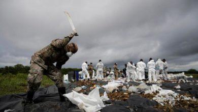 Photo of Coronavirus pandemic has criminal underworld on the ropes