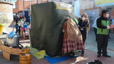 Photo of Medicinal plant chambers used to reinforce against COVID-19 in Bolivia