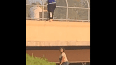Photo of Woman Attempts Jump Off Overpass Near Perkins and I-240