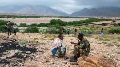 Photo of Ancient secrets of Somalia's nomadic civilization unearthed