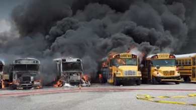 Photo of Several School Buses in DeSoto County Go Up In Flames