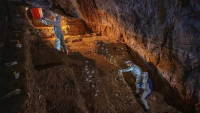 Photo of Mexico find suggests humans lived in Americas much earlier than thought