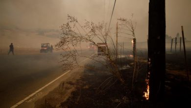 Photo of Forest fires consume 46,000 acres near California wine-producing area