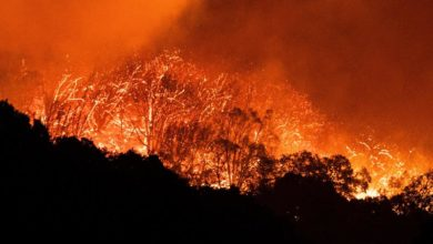 Photo of More than 40 California blazes burning in worst-ever fire season