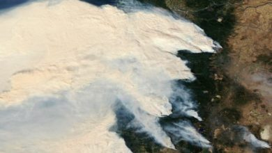 Photo of More than 500,000 evacuated as fires ravage Oregon