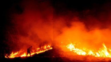 Photo of Weather gives US firefighters a break, but forecast is worrisome