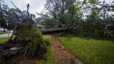 "Photo of Sally makes landfall, brings ""historic"" flooding to US Gulf Coast"