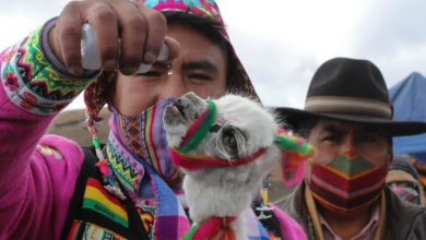 Photo of Andean ritual asks deities to ward off COVID-19 from Bolivia