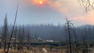Photo of California wildfires wreak havoc on marijuana country