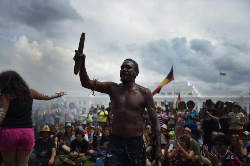 25 Australian native sacred tree defenders arrested